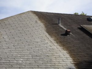 Good It Is An Algae That Actually Eats Limestone And Guess What Most Shingles  Have In Them? Limestone! An Indianapolis Roof Cleaning Can Be The Solution.